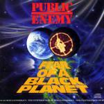 25 Years Of <em>Fear Of A Black Planet</em>